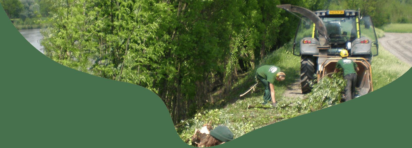 Gestion des ouvrages Gestion de la vegetation 03
