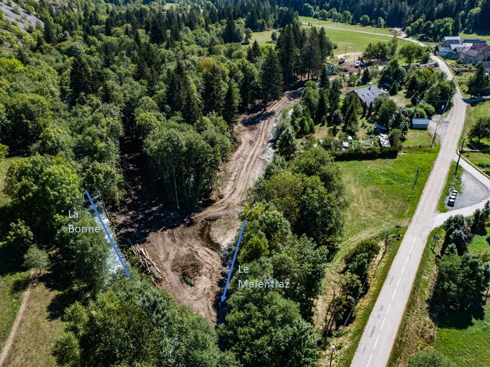 Restauration Bonne Malentraz - Phase 1 dévégétalisation, confluence Bonne Malentraz Valjouffrey UT Drac - ©DR