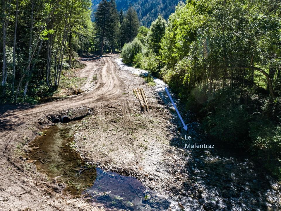 Restauration Bonne Malentraz - Phase 1 dévégétalisation rive droite Malentraz Valjouffrey UT Drac - ©DR