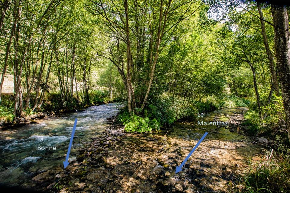 Restauration Bonne Malentraz - Avant travaux, confluence Bonne Malentraz Valjouffrey UT Drac - ©DR