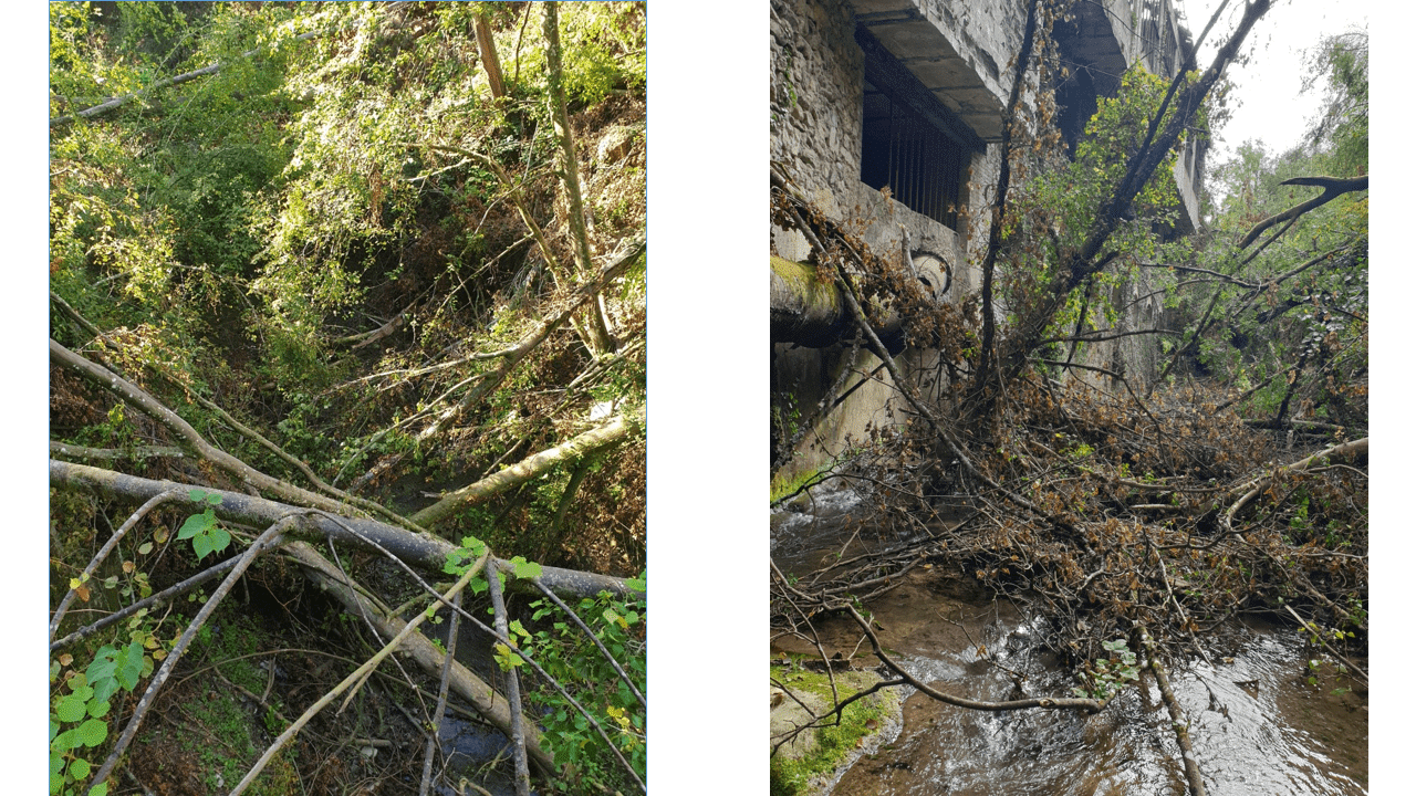 Photos 2/ Travaux enlèvement d'embâcle – Gorges de la Morge