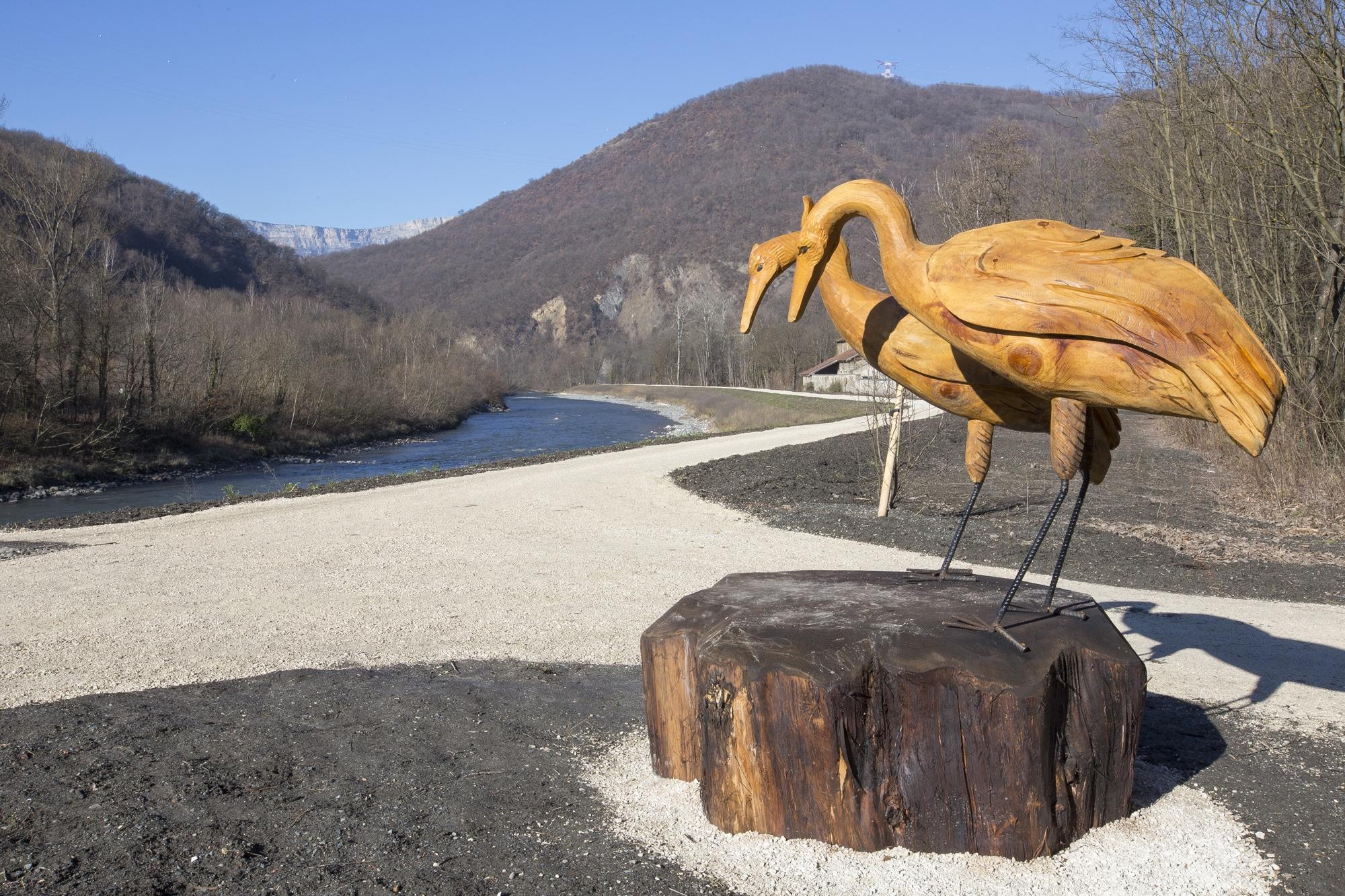 héron en bois au bord d'une rivière